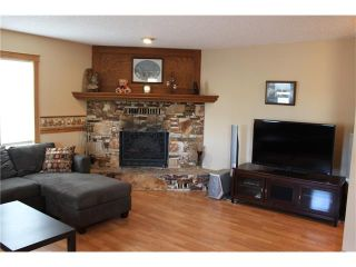 Photo 27: 121 CARR Crescent: Okotoks House for sale : MLS®# C4081929