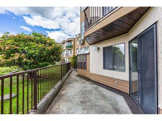 """Photo 24: 7 11900 228 Street in Maple Ridge: East Central Condo for sale in """"MOONLITE GROVE"""" : MLS®# R2590781"""