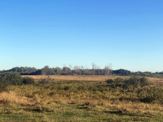 Photo 5: 193036 TWP 534: Rural Lamont County Rural Land/Vacant Lot for sale : MLS®# E4261454