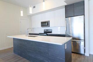 Photo 4: PH08 70 Philip Lee Drive in Winnipeg: Crocus Meadows Condominium for sale (3K)  : MLS®# 202100801