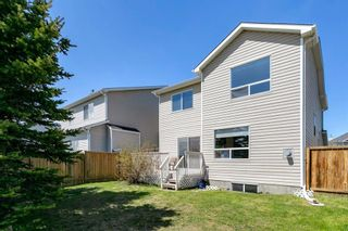 Photo 46: 94 Royal Elm Way NW in Calgary: Royal Oak Detached for sale : MLS®# A1107041