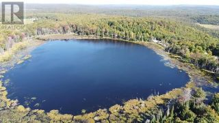 Photo 6: 300 HAMILTON LAKE Road in South River: Vacant Land for sale : MLS®# 40159931