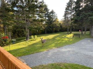 Photo 31: 61 Douglas Road in Alma: 108-Rural Pictou County Residential for sale (Northern Region)  : MLS®# 202125836