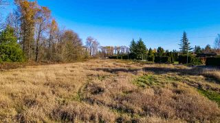 Photo 8: 8393 200 Street in Langley: Willoughby Heights Land for sale : MLS®# R2513389