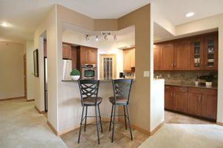 Photo 13: 403 380 Wellington Crescent in Winnipeg: Crescentwood Condominium for sale (1C)  : MLS®# 202120473