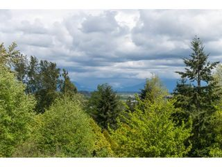 """Photo 14: 17586 28 Avenue in Surrey: Grandview Surrey House for sale in """"Country Woods Estates - Grandview"""" (South Surrey White Rock)  : MLS®# R2553439"""