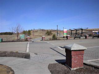 Photo 4: 114 2560 Pegasus in Edmonton: Zone 27 Townhouse for sale : MLS®# E4236412