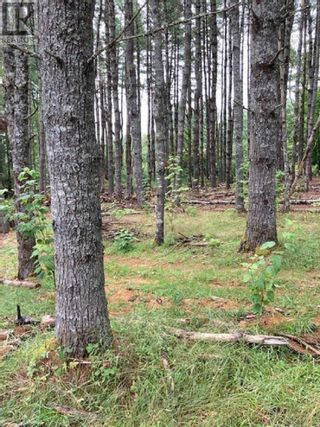 Photo 3: Lot 40C Labelle Road in Labelle: Vacant Land for sale : MLS®# 202120719