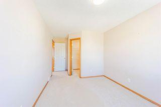 Photo 33: 185 Saddlecreek Point NE in Calgary: Saddle Ridge Detached for sale : MLS®# A1113221