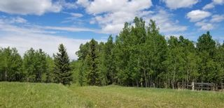 Photo 1: 5.78 Acres Parkins Road: Rural Foothills County Land for sale : MLS®# A1086953