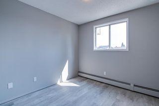 Photo 15: 204 3610 43 Avenue NW in Edmonton: Zone 29 Condo for sale : MLS®# E4258814