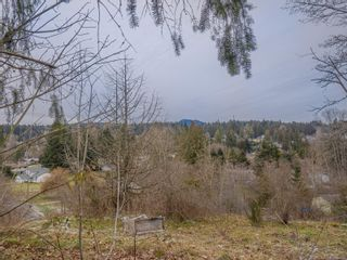 Photo 29: 1935 Kelsie Rd in : Na Chase River House for sale (Nanaimo)  : MLS®# 866466
