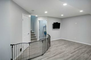 Photo 24: 21 CITADEL CREST Place NW in Calgary: Citadel Detached for sale : MLS®# C4197378