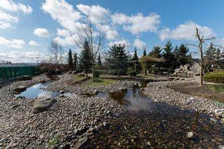 """Photo 19: 803 2980 ATLANTIC Avenue in Coquitlam: North Coquitlam Condo for sale in """"LEVO"""" : MLS®# R2252716"""