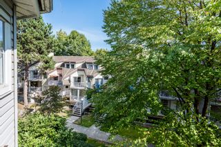 """Photo 18: 312 2678 DIXON Street in Port Coquitlam: Central Pt Coquitlam Condo for sale in """"The Springdale"""" : MLS®# R2307158"""