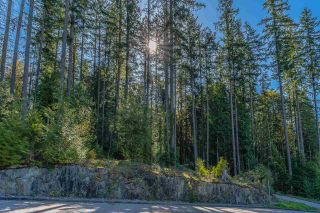 "Photo 34: 5 13511 240 Street in Maple Ridge: Silver Valley House for sale in ""Harmony at Rock Ridge"" : MLS®# R2570341"
