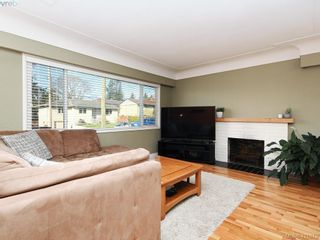 Photo 3: 4145 Birtles Ave in VICTORIA: SW Glanford House for sale (Saanich West)  : MLS®# 835004