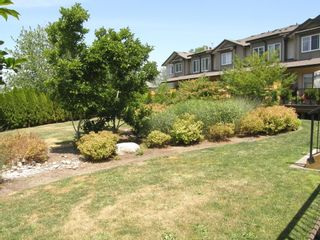 """Photo 21: 27 22865 Telosky Avenue in """"WINDSONG"""": Home for sale : MLS®# v1130650"""