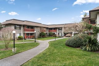 Photo 1: 102 10110 Fifth St in : Si Sidney North-East Condo for sale (Sidney)  : MLS®# 866291