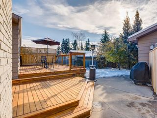 Photo 44: 536 BROOKMERE Crescent SW in Calgary: Braeside Detached for sale : MLS®# C4221954