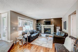 Photo 10: 34 Macewan Ridge Circle in Calgary: MacEwan Glen Detached for sale : MLS®# A1144790