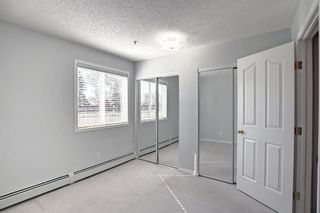 Photo 15: 108 2108 Valleyview Park SE in Calgary: Dover Apartment for sale : MLS®# A1145848