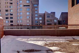 Photo 8: 500J 500 EAU CLAIRE Avenue SW in Calgary: Eau Claire Apartment for sale : MLS®# C4281669