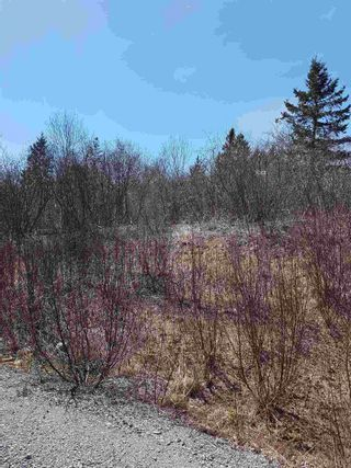 Photo 3: lot 19 Jorphie Drive in Mount Uniacke: 105-East Hants/Colchester West Vacant Land for sale (Halifax-Dartmouth)  : MLS®# 202104195