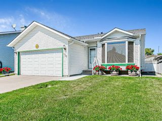Photo 1: 139 Appletree Close SE in Calgary: Applewood Park Detached for sale : MLS®# A1022936