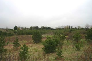 Photo 8: 475547 County Road 11 in Amaranth: Rural Amaranth Property for sale : MLS®# X4667613