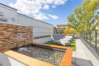 Photo 29: 214 515 4 Avenue NE in Calgary: Bridgeland/Riverside Apartment for sale : MLS®# A1152344