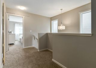Photo 24: 481 Evanston Drive NW in Calgary: Evanston Detached for sale : MLS®# A1126574