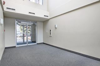 Photo 26: 6 210 Village Terrace SW in Calgary: Patterson Apartment for sale : MLS®# A1080449