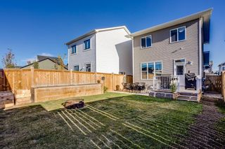 Photo 23: 232 Vista Drive: Crossfield Detached for sale : MLS®# A1153089