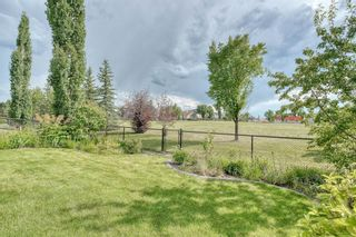 Photo 1: 59 CRANWELL Close SE in Calgary: Cranston Detached for sale : MLS®# A1019826