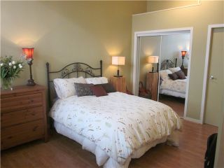 Photo 9: 302 549 columbia Street in New Westminster: Downtown NW Condo for sale : MLS®# v929106