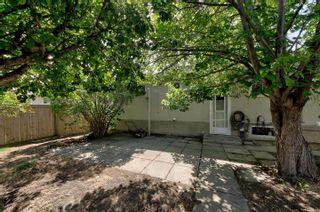 Photo 27: 13111 85 Street in Edmonton: Zone 02 House for sale : MLS®# E4251770