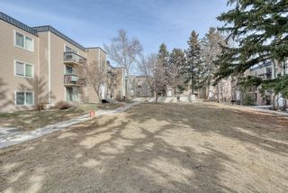 Photo 41: 306 315 Heritage Drive SE in Calgary: Acadia Apartment for sale : MLS®# A1090556