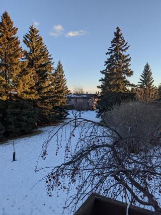 Photo 22: 105 Rundlewood Lane NE in Calgary: Rundle Semi Detached for sale : MLS®# A1060761