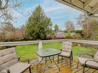 Photo 21: 930 Bank St in : Vi Fairfield East House for sale (Victoria)  : MLS®# 870826