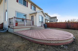 Photo 30: 143 Chapman Circle SE in Calgary: Chaparral Detached for sale : MLS®# A1091660