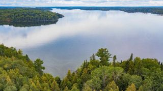 Photo 13: Lot 19 Five Point Island in South of Kenora: Vacant Land for sale : MLS®# TB212087