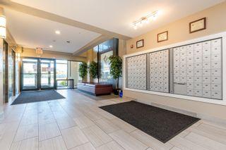 Photo 6: 213 11080 ELLERSLIE Road in Edmonton: Zone 55 Condo for sale : MLS®# E4263614