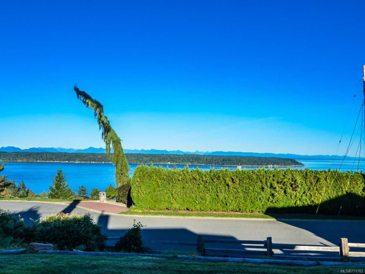 Photo 49: Photos: 451 S McLean St in CAMPBELL RIVER: CR Campbell River Central House for sale (Campbell River)  : MLS®# 771782