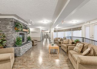 Photo 28: 3229 3229 MILLRISE Point SW in Calgary: Millrise Apartment for sale : MLS®# A1116138