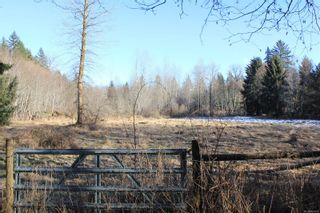 Photo 47: 4325 York Rd in : CR Campbell River South House for sale (Campbell River)  : MLS®# 867428