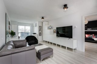 Photo 13: 2439 22A Street NW in Calgary: Banff Trail Detached for sale : MLS®# A1135055