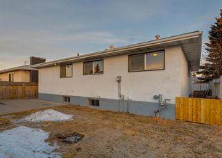 Photo 41: 11039 166 Avenue: Edmonton Detached for sale : MLS®# A1083224