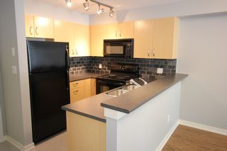 """Photo 3: 209 20750 DUNCAN Way in Langley: Langley City Condo for sale in """"Fairfield Lane"""" : MLS®# R2401176"""
