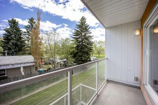 Photo 15: 202 4455C Greenview Drive NE in Calgary: Greenview Apartment for sale : MLS®# A1110677